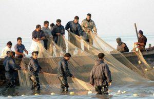 صید ماهی در آستارا